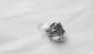 批发供应各类不锈钢戒指 动物戒指