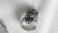 专业生产各类不锈钢首饰 动物不锈钢戒指 潮流时尚